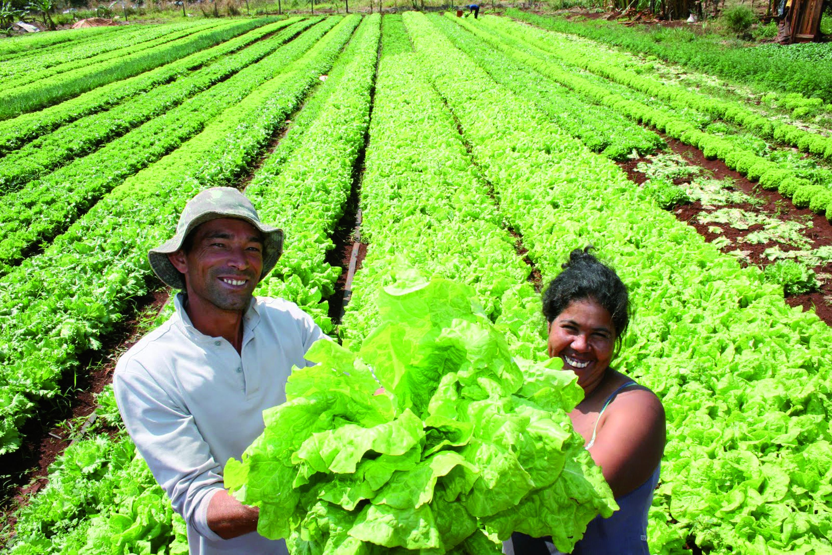 Agricultura en Brasil